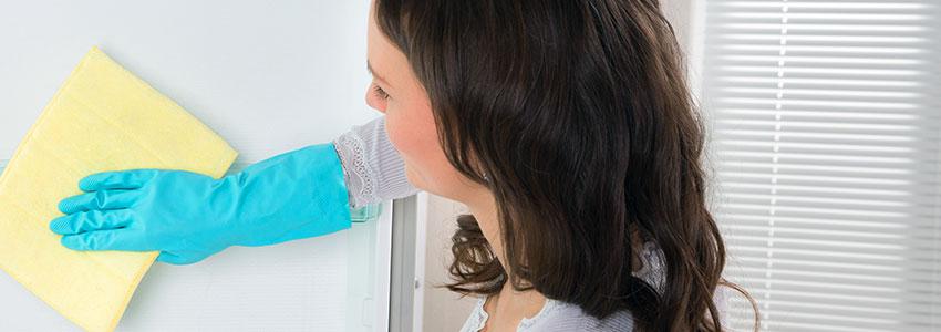 Clean the fridge furniture