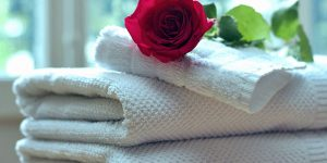 clean towel